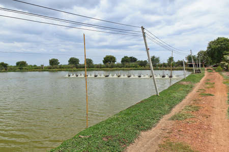Water turbines on Shrimp ponds in Thai. Stock Photo