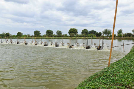 Water turbines on Shrimp ponds in Thai