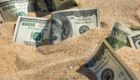 sand dollar: One hundred dollars in sand on a beach