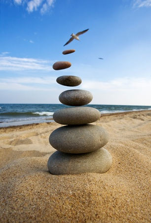 ascend: Stones fly behind a bird in the sky