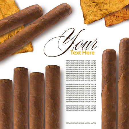 Cigars in a row close-up, may be used as background photo