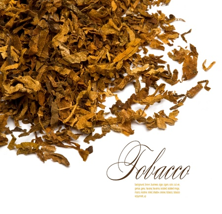 Cut and dried different sorts (kinds) tobacco leaves. photo