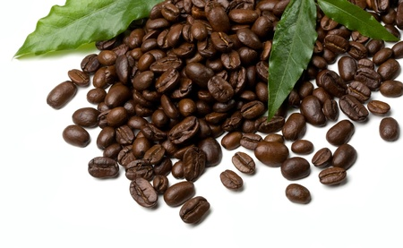 coffee grains and leaves on white background photo