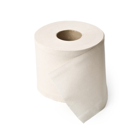 loo: single roll of white rolled toilet paper
