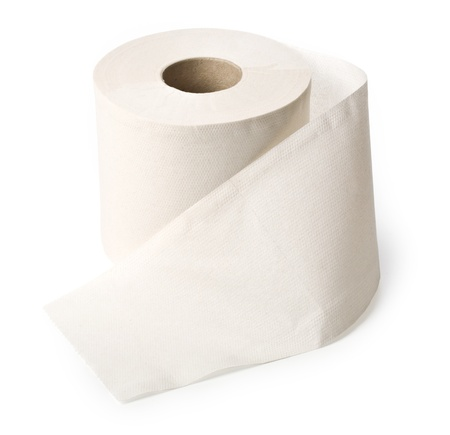 toilet roll: single roll of white rolled toilet paper