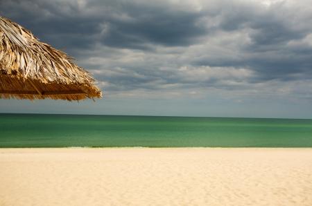 Panoramic image of exotic tropical beach photo