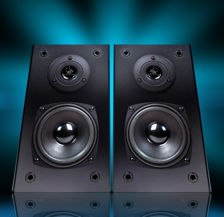 party system: Audio speaker in  case isolated on black background,