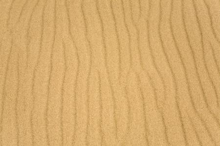 Yellow sand texture, background photo