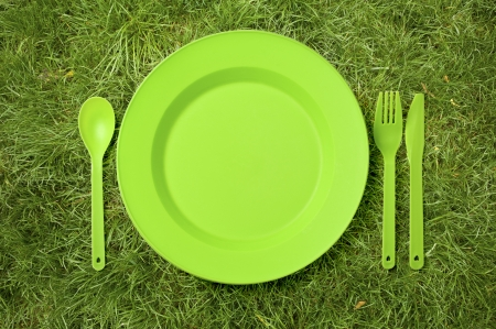 disposable: disposable tableware set on the green grass