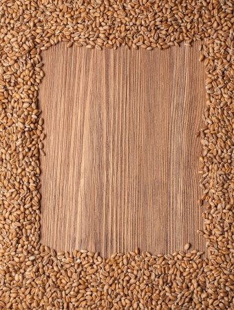 fascicle: wheat grain on wood texture background