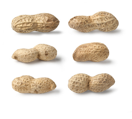 Set of Peanuts isolated on white background close up Stock Photo