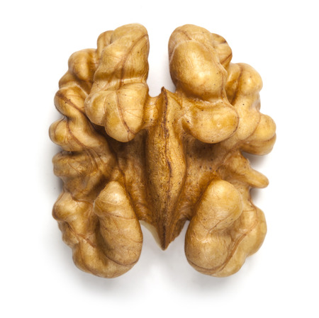 kernel: Kernel walnut isolated on the white  Stock Photo