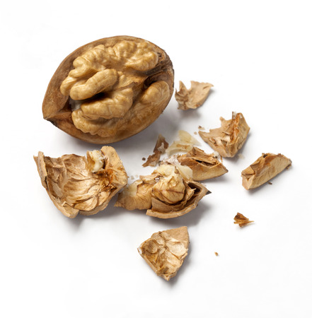pecan: a cracked walnut isolated on the white background Stock Photo