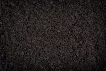 clod: close up of black soil background  pattern  concepts Stock Photo