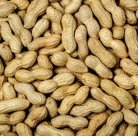boil: Boil peanut texture close up background