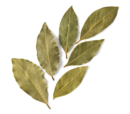 Dried bay leaves isolated on white background with clipping path