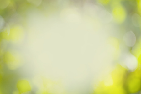 brilliancy: soft colored spring  abstract background