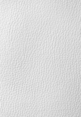 leather: White leather background or texture for your design