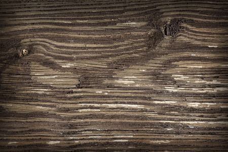 wooden floors: the brown wood texture with natural patterns