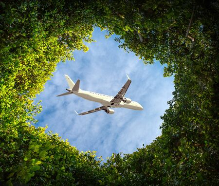 The plane flies in the sky through the leaves