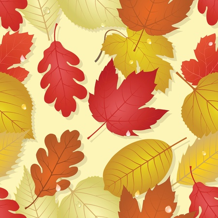 Autumn Stock Vector - 11194586