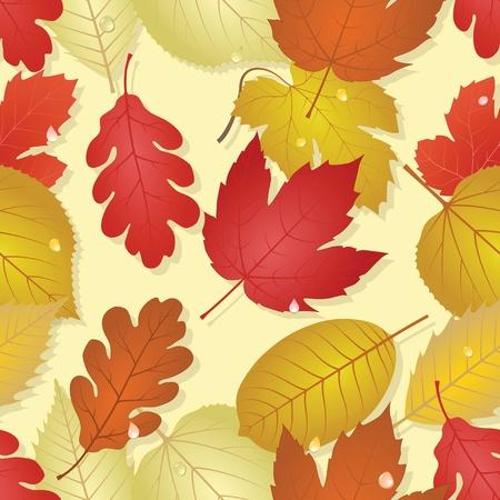 Autumn Stock Vector - 11194586