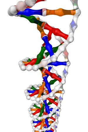 DNA helix - isolated Stock Photo - 12477614