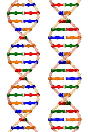 adenine: DNA helices - isolated on a white background