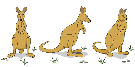 Wallaby figures in different positions Illustration