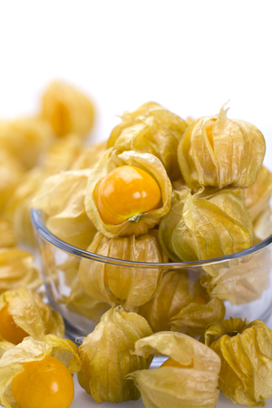 Cape gooseberries isolated on white background