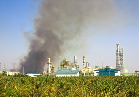 Industry conflagration near pineapple farm