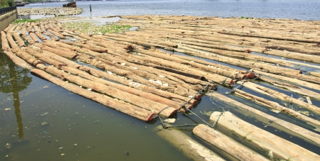 plentifully: waste & log plentifully on river from the deforestation Stock Photo