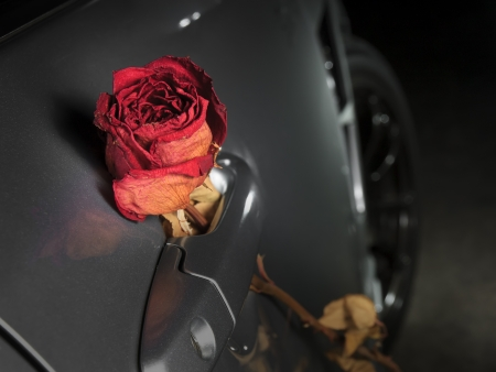 beautiful dry red rose on sport car handle, underground feeling photo