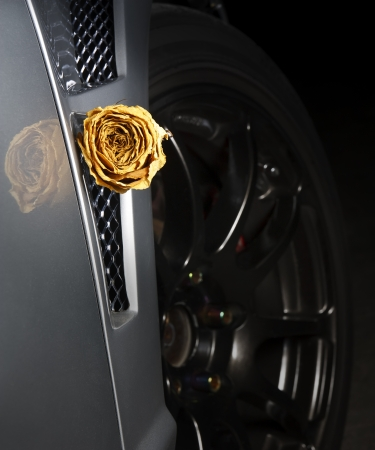 beautiful dry white rose on side diffuser sport car, underground feeling photo