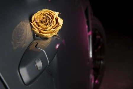 beautiful dry white rose on sport car handle, underground feeling photo