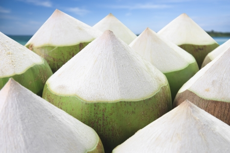 pile young coconut on the beach background, refreshing Stock Photo
