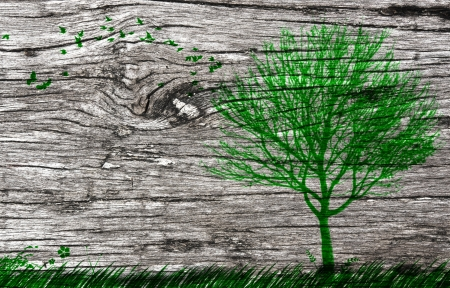 landscape paint on old wooden plate background