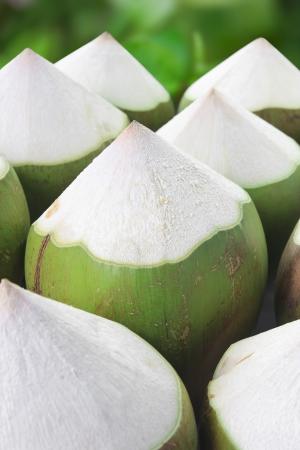 stapelen jonge kokosnoot op de natuur
