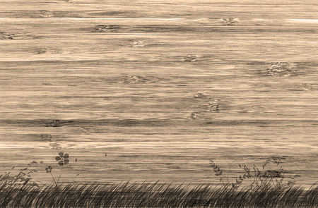 wood texture sepia tone with nature paint for background, horizontal Stock Photo