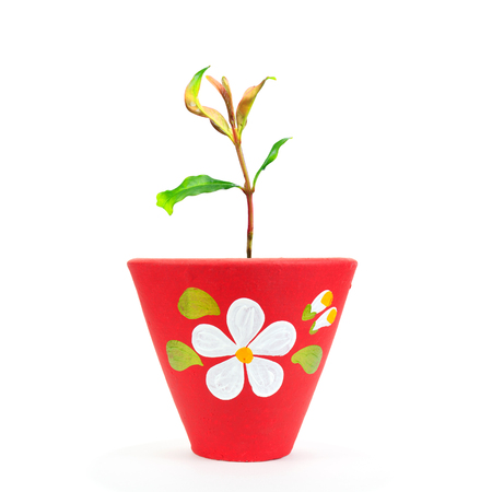 green seedling or tree plant in red pottery flowerpot to conserve nature and the environment with fresh oxygen on white background isolated