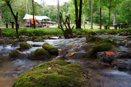 stream and waterfall with tree and rock or stone in green jungle or forest for summer holiday relax and travel trip with camping tent and picnic on meadow or green grass at Khao Laem National Park Stockfoto