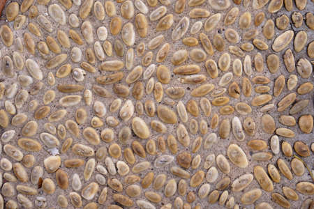 gravel or brown pebble and scree with stone in cement wall or concrete floor and ground for foot relax massage or health spa and interior or exterior decor on street and for texture background Foto de archivo