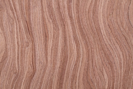 Texture of wood veneer photo