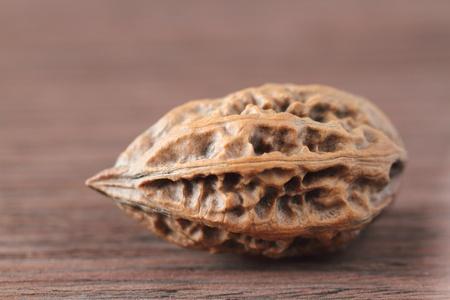 Manchurian walnut  Juglans mandshurica  Stock Photo