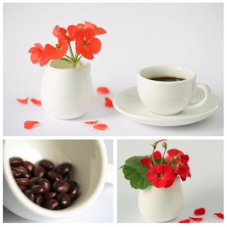 triptico: Café