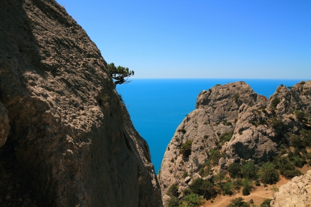 Landscape of sea in the Crimea photo