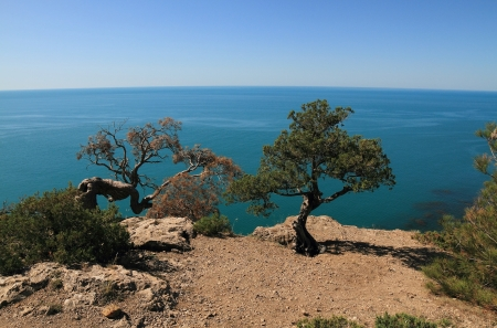 typical landscape of the southern coast of the Crimea photo