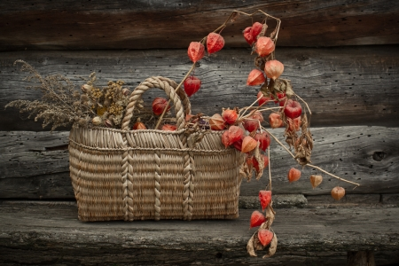 Dry flowers in the birchbark basket photo