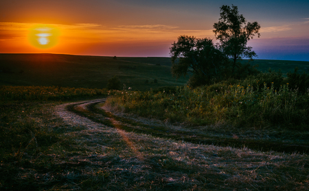 Beautiful sunset over the meadow Stock Photo
