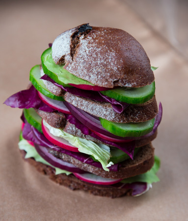 wholesome: Wholesome sandwich with garden radish, cucumber, violet onion and radicchio